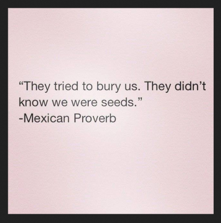 they tried to bury us. They didn't know we were seeds. Mexican proverb